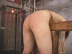 Carqueja peituda no chuveiro 3d porno einstein